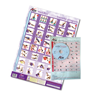 Swiss Ball Exercise Prescription Kit